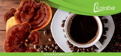 قیمت قهوه گانودرما